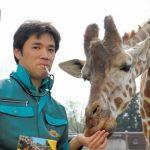 柴田典弘(キリン飼育員)の家族や経歴は?動物園の場所や年収も調査!